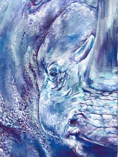 rhinofrontsmall